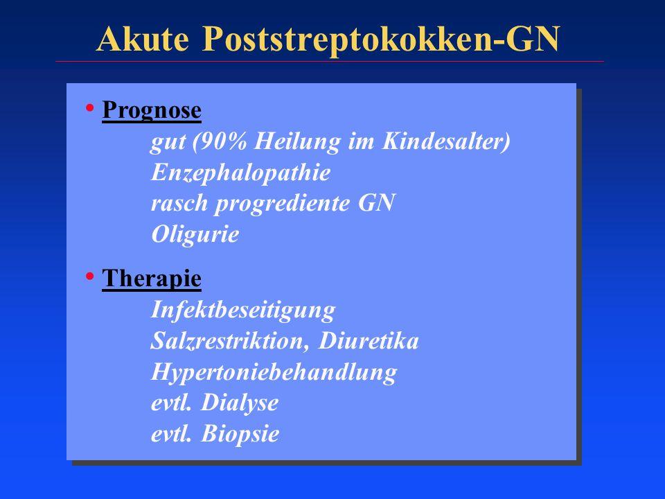 Prognose gut (90% Heilung im Kindesalter) Enzephalopathie rasch progrediente GN Oligurie Therapie Infektbeseitigung Salzrestriktion, Diuretika Hyperto