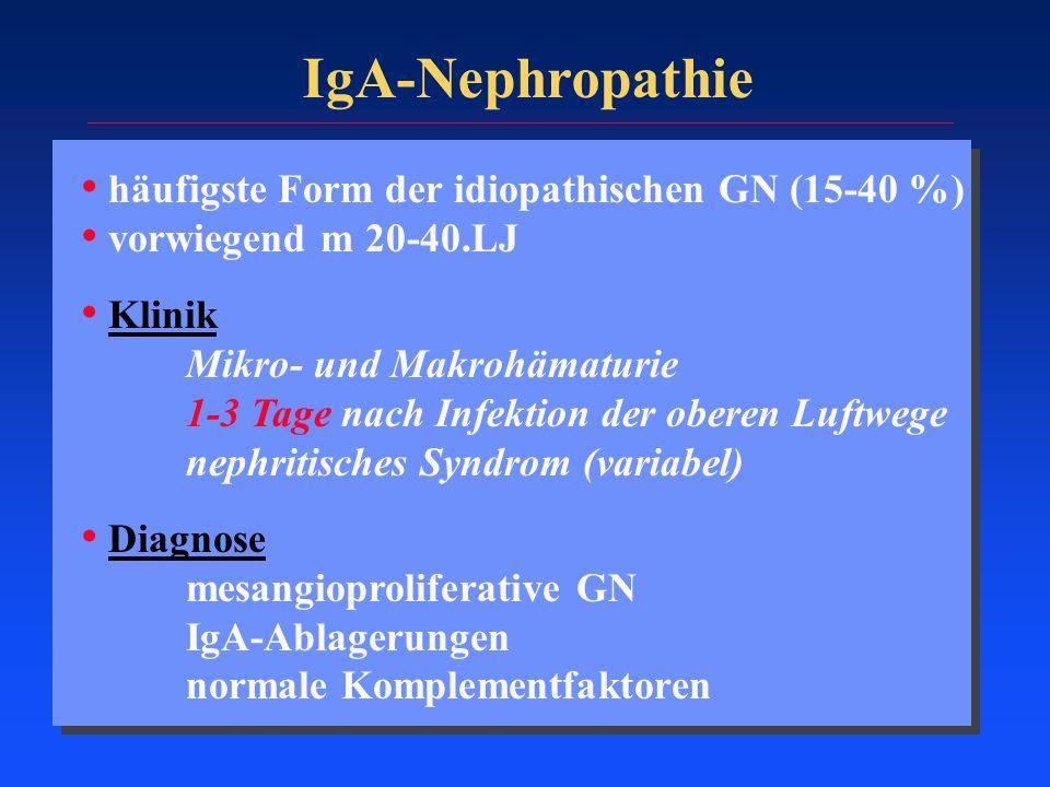 IgA-Nephropathie häufigste Form der idiopathischen GN (15-40 %) vorwiegend m 20-40.LJ Klinik Mikro- und Makrohämaturie 1-3 Tage nach Infektion der obe