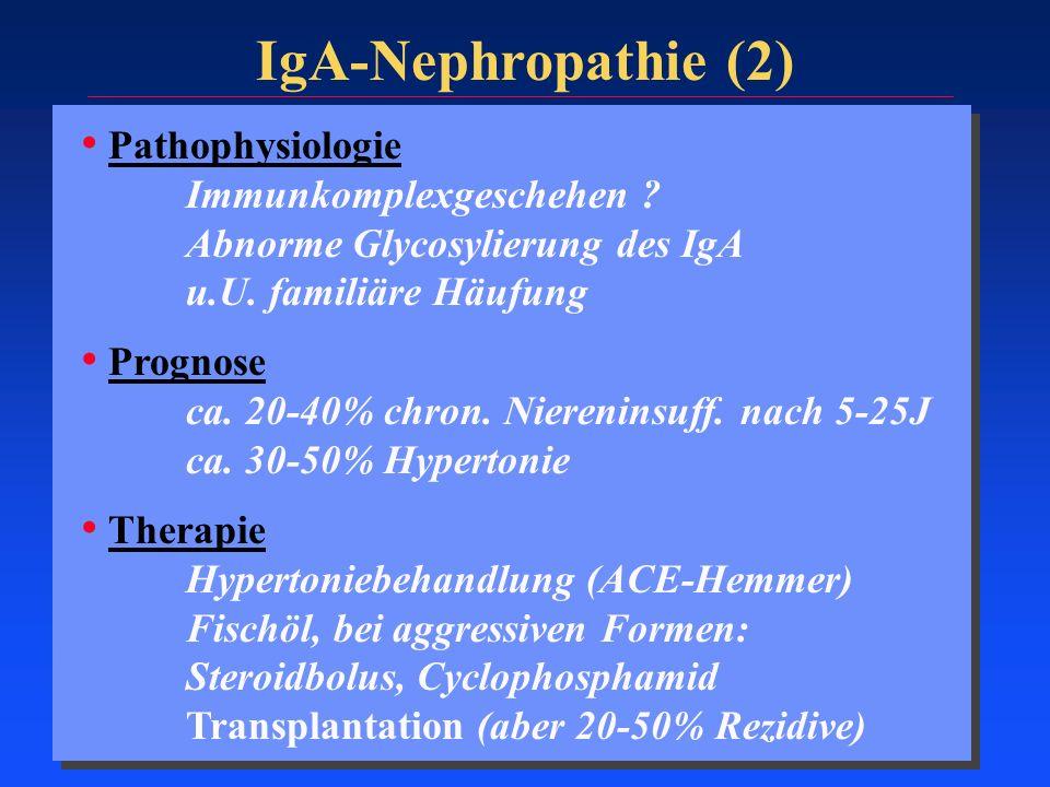 IgA-Nephropathie (2) Pathophysiologie Immunkomplexgeschehen ? Abnorme Glycosylierung des IgA u.U. familiäre Häufung Prognose ca. 20-40% chron. Niereni