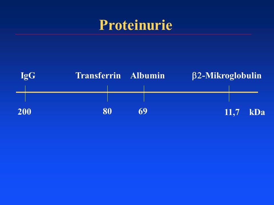 Proteinurie IgGTransferrinAlbumin -Mikroglobulin 11,7 6980 200 kDa