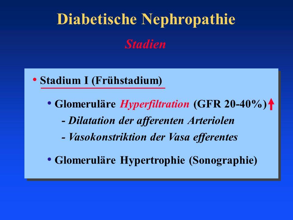 Diabetische Nephropathie Stadium I (Frühstadium) Glomeruläre Hyperfiltration (GFR 20-40%) - Dilatation der afferenten Arteriolen - Vasokonstriktion de