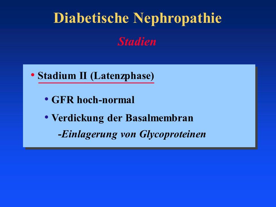 Diabetische Nephropathie Stadium II (Latenzphase) GFR hoch-normal Verdickung der Basalmembran -Einlagerung von Glycoproteinen Stadien