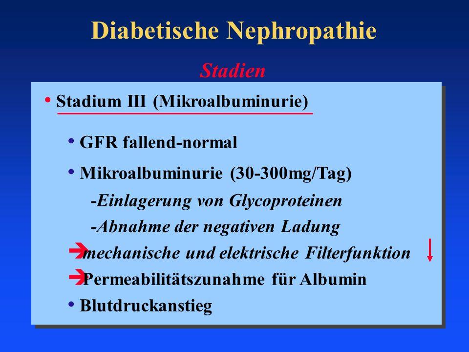 Diabetische Nephropathie Stadium III (Mikroalbuminurie) GFR fallend-normal Mikroalbuminurie (30-300mg/Tag) -Einlagerung von Glycoproteinen -Abnahme de