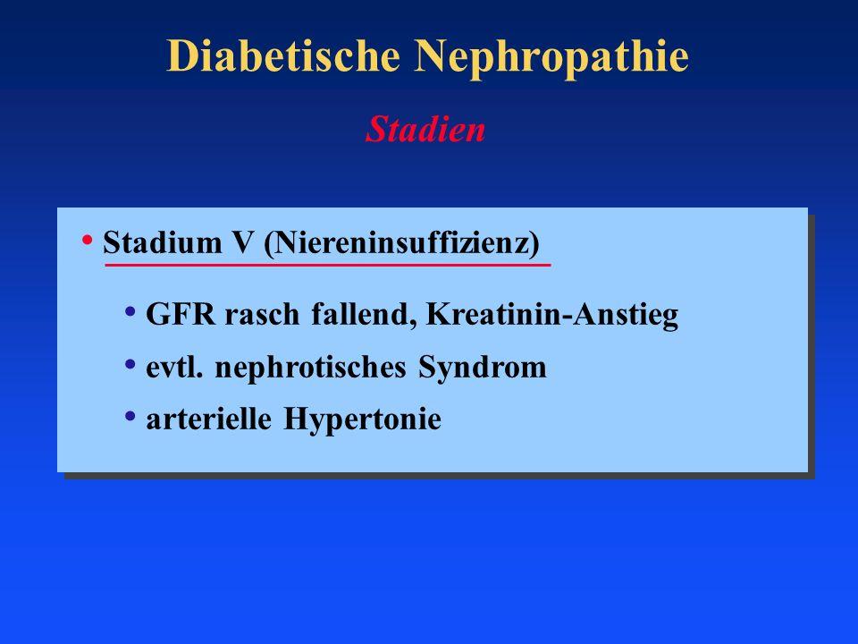 Diabetische Nephropathie Stadium V (Niereninsuffizienz) GFR rasch fallend, Kreatinin-Anstieg evtl. nephrotisches Syndrom arterielle Hypertonie Stadien