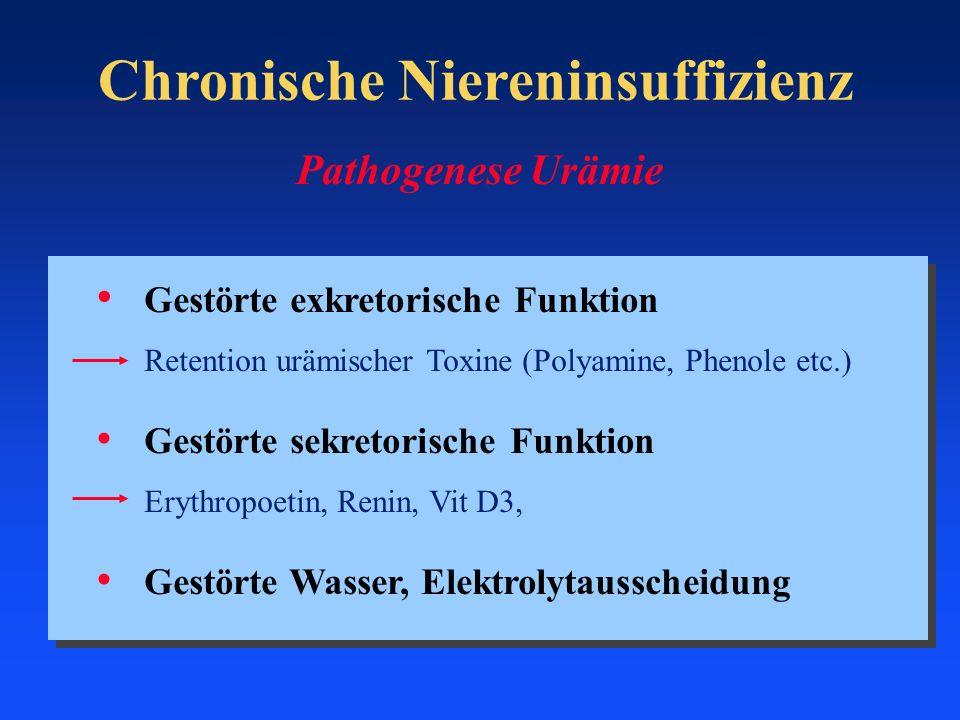 Pathogenese Urämie Gestörte exkretorische Funktion Retention urämischer Toxine (Polyamine, Phenole etc.) Gestörte sekretorische Funktion Erythropoetin