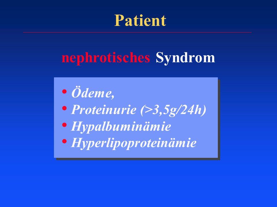 Patient nephrotisches Syndrom Ödeme, Proteinurie (>3,5g/24h) Hypalbuminämie Hyperlipoproteinämie