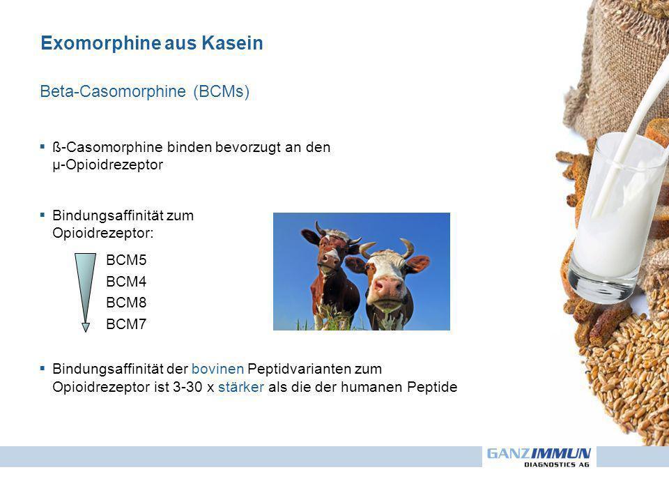 Exomorphine aus Kasein ß-Casomorphine binden bevorzugt an den µ-Opioidrezeptor Bindungsaffinität zum Opioidrezeptor: BCM5 BCM4 BCM8 BCM7 Bindungsaffinität der bovinen Peptidvarianten zum Opioidrezeptor ist 3-30 x stärker als die der humanen Peptide Beta-Casomorphine (BCMs)