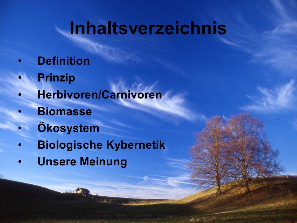 Definition Nahrungsketten stellen den Energie- und Stofffluss in Ökosystemen dar.