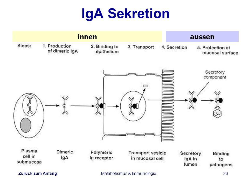 Zurück zum Anfang Metabolismus & Immunologie26 IgA Sekretion innenaussen