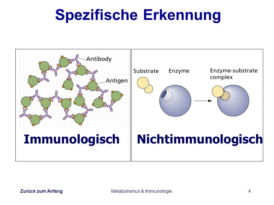 Zurück zum Anfang Metabolismus & Immunologie4 Spezifische Erkennung Immunologisch Nichtimmunologisch
