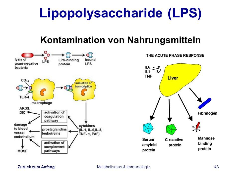 Zurück zum Anfang Metabolismus & Immunologie43 Lipopolysaccharide (LPS) Kontamination von Nahrungsmitteln