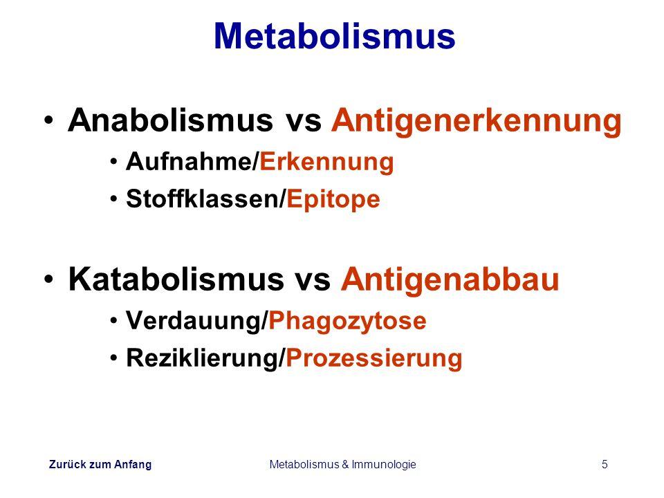 Zurück zum Anfang Metabolismus & Immunologie5 Metabolismus Anabolismus vs Antigenerkennung Aufnahme/Erkennung Stoffklassen/Epitope Katabolismus vs Ant