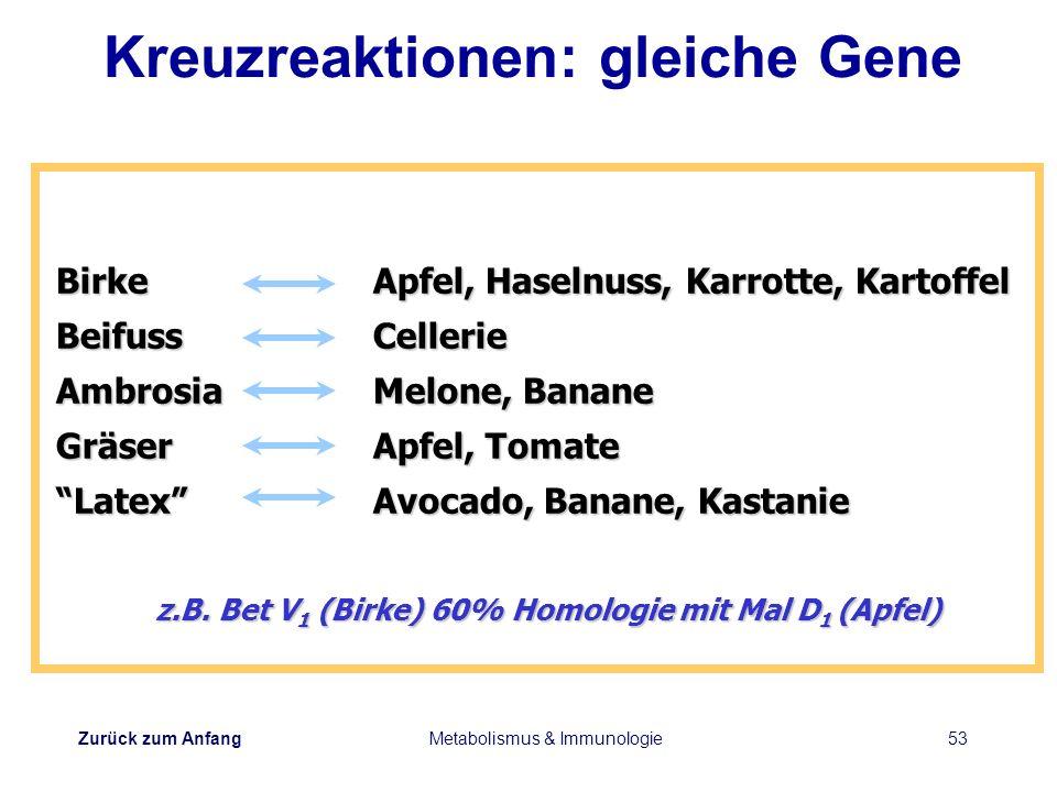 Zurück zum Anfang Metabolismus & Immunologie53 z.B. Bet V 1 (Birke) 60% Homologie mit Mal D 1 (Apfel) BirkeApfel, Haselnuss, Karrotte, Kartoffel Beifu