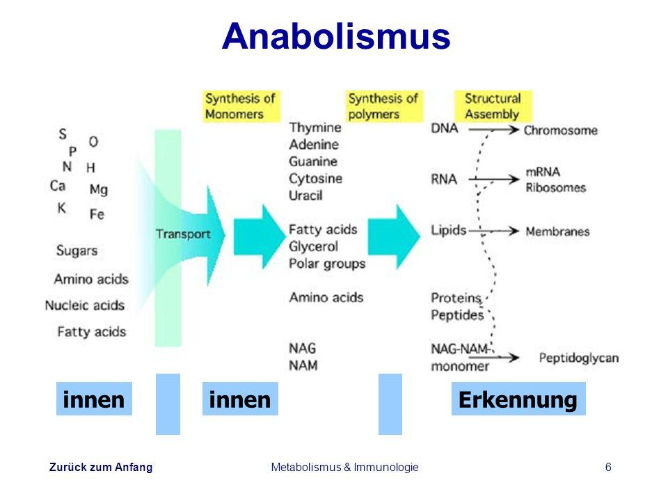 Zurück zum Anfang Metabolismus & Immunologie6 Anabolismus innen Erkennung