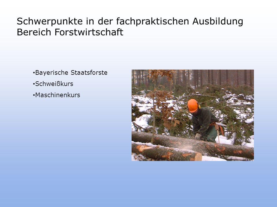 Schwerpunkte in der fachpraktischen Ausbildung Bereich Forstwirtschaft Bayerische Staatsforste Schweißkurs Maschinenkurs