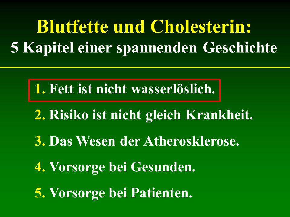 Wofür ist das Cholesterin gefährlich.Wohin geht überschüssiges Fett und Zucker.