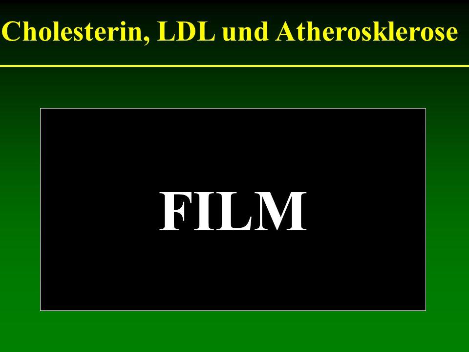 Cholesterin, LDL und Atherosklerose FILM