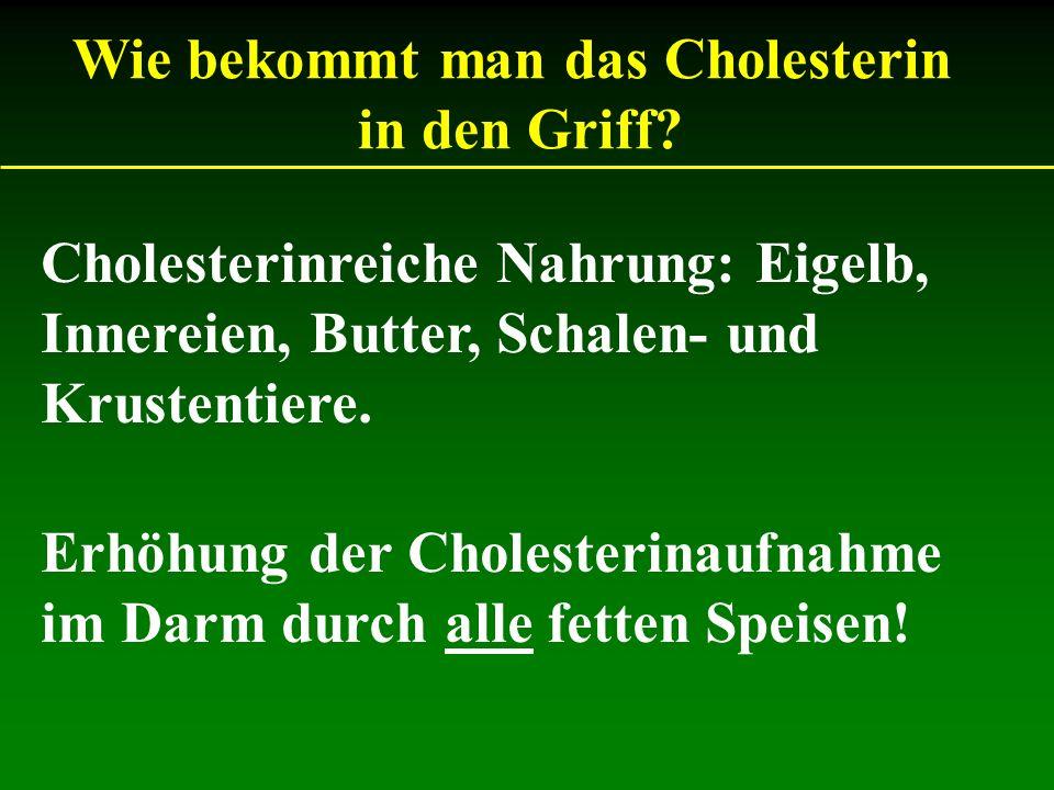 Cholesterinreiche Nahrung: Eigelb, Innereien, Butter, Schalen- und Krustentiere. Wie bekommt man das Cholesterin in den Griff? Erhöhung der Cholesteri