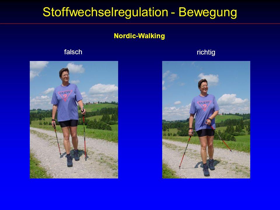Stoffwechselregulation - Bewegung Nordic-Walking falsch richtig