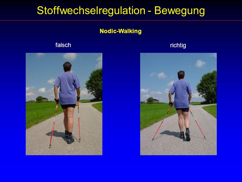 Stoffwechselregulation - Bewegung Nodic-Walking falsch richtig
