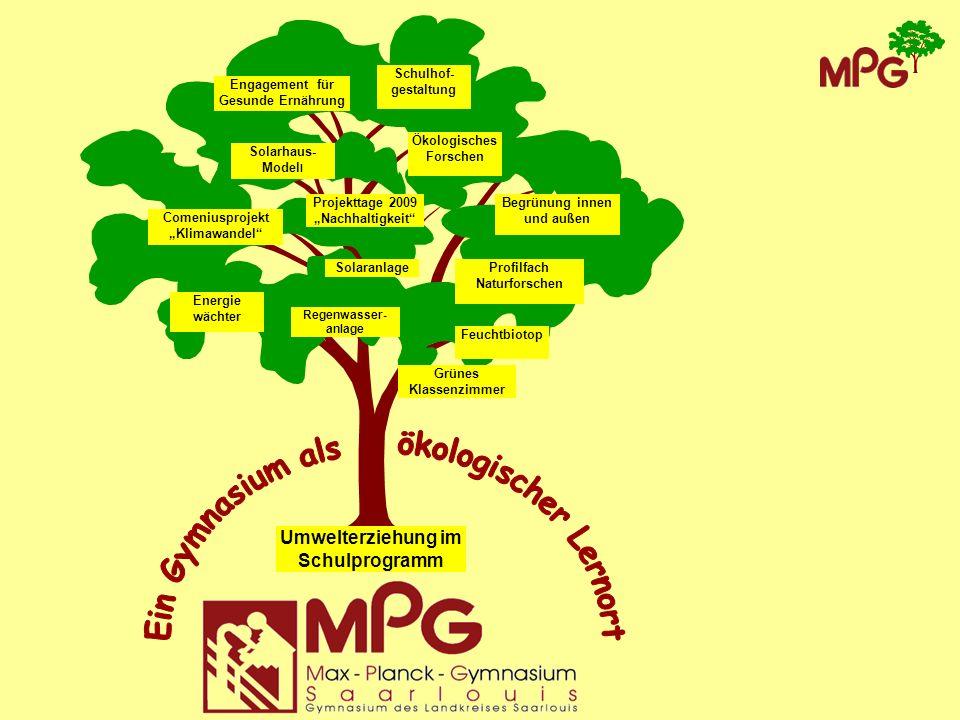 Vorstellen wollen wir Ihnen Das Baummikado auf dem oberen Schulhof Das Solarhausmodell Unser Engagement für eine gesunde Ernährung Das Comeniusprojekt zum Thema Klimawandel Das neue Profilfach Naturforschen Unser neuer Schulgarten und die Biotope auf dem Schulgelände
