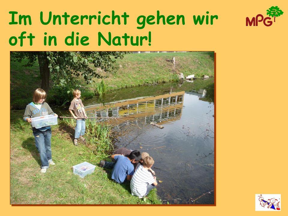 Im Unterricht gehen wir oft in die Natur!