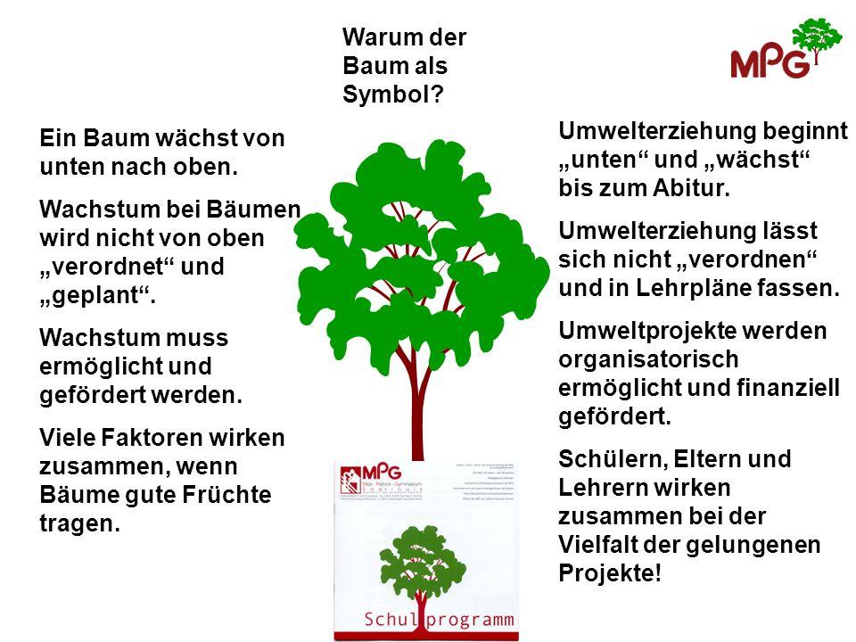 Warum der Baum als Symbol? Ein Baum wächst von unten nach oben. Wachstum bei Bäumen wird nicht von oben verordnet und geplant. Wachstum muss ermöglich
