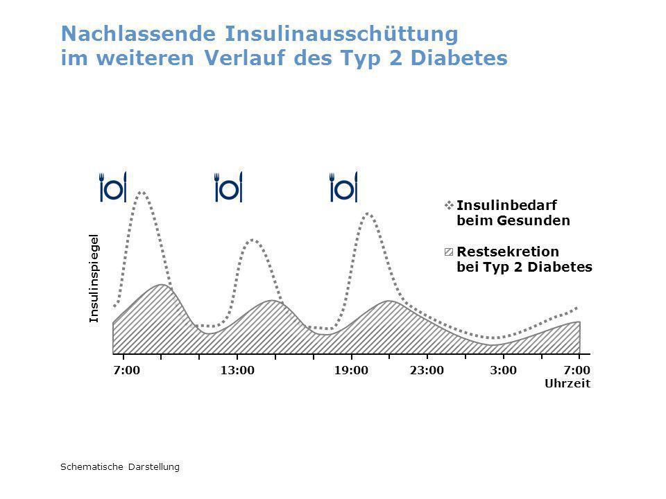 Nachlassende Insulinausschüttung im weiteren Verlauf des Typ 2 Diabetes Insulinspiegel Insulinbedarf beim Gesunden Restsekretion bei Typ 2 Diabetes 7: