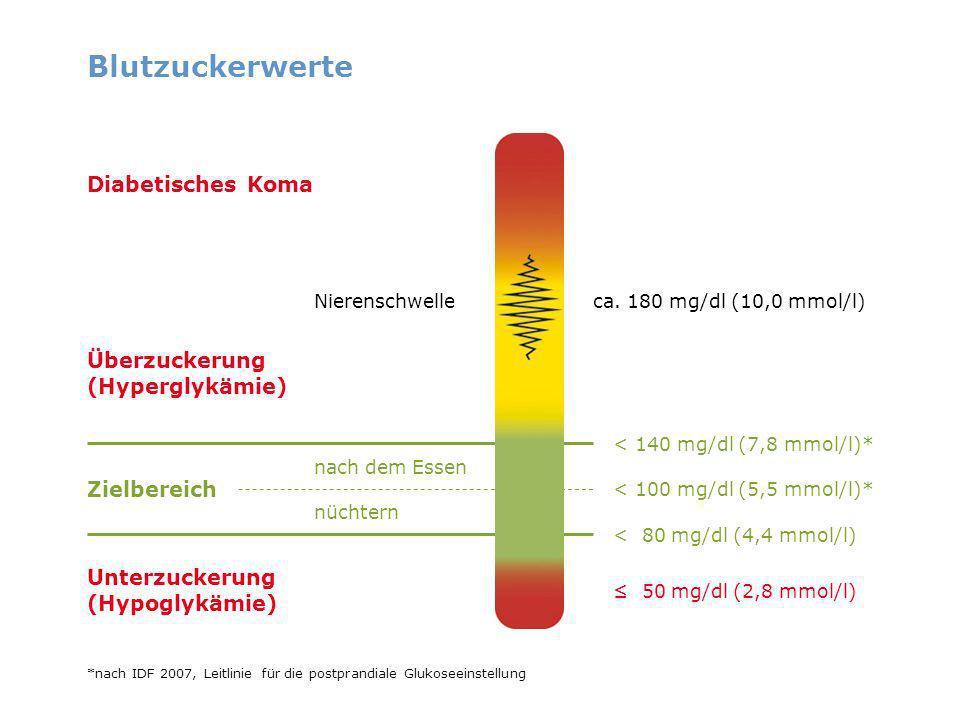 Blutzuckerwerte ca. 180 mg/dl (10,0 mmol/l) Überzuckerung (Hyperglykämie) Nierenschwelle Unterzuckerung (Hypoglykämie) nach dem Essen nüchtern Zielber