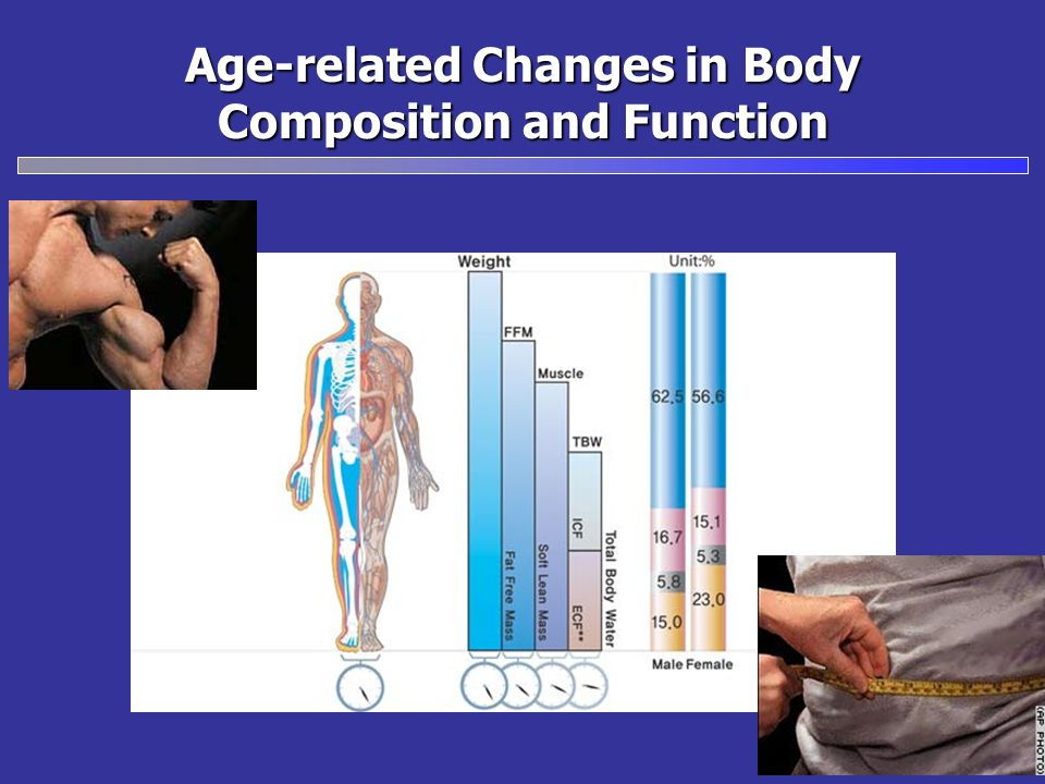 Age-related Changes in Body Composition and Function