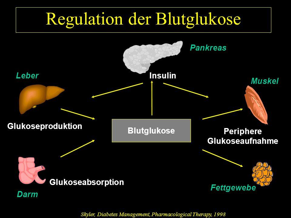 Muskel Regulation der Blutglukose Glukoseproduktion Pankreas InsulinLeber Periphere Glukoseaufnahme Blutglukose Glukoseabsorption Fettgewebe Darm Skyler, Diabetes Management, Pharmacological Therapy, 1998