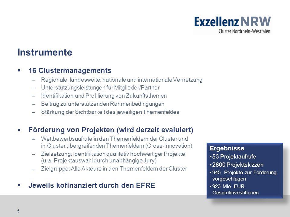 5 Instrumente 16 Clustermanagements –Regionale, landesweite, nationale und internationale Vernetzung –Unterstützungsleistungen für Mitglieder/Partner