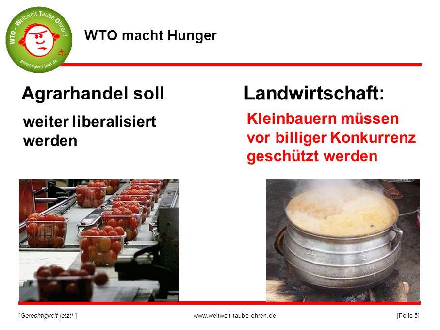 [Gerechtigkeit jetzt! ]www.weltweit-taube-ohren.de[Folie 5] Landwirtschaft: Agrarhandel soll weiter liberalisiert werden WTO macht Hunger Kleinbauern