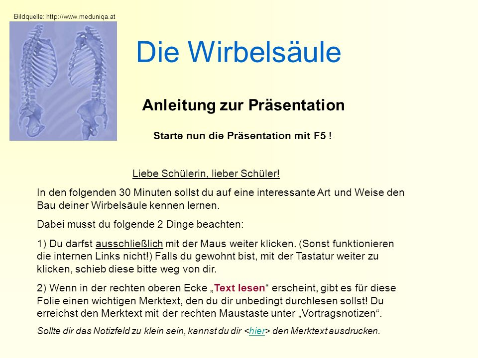 Die Wirbelsäule Anleitung zur Präsentation Liebe Schülerin, lieber Schüler.