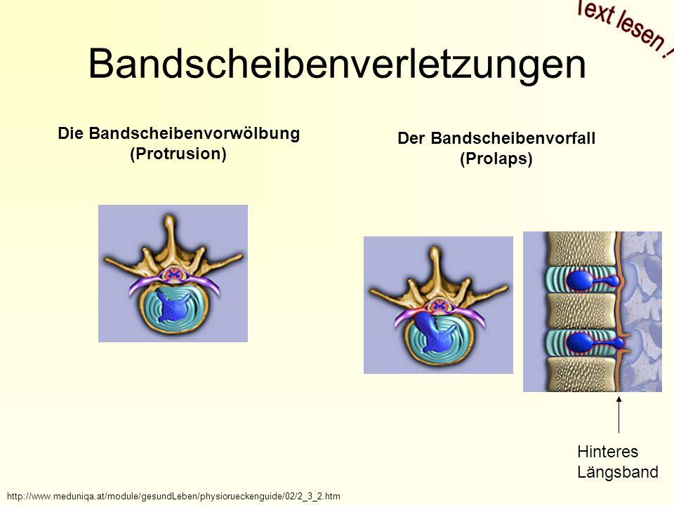 Bandscheibenverletzungen Die Bandscheibenvorwölbung (Protrusion) Der Bandscheibenvorfall (Prolaps) http://www.meduniqa.at/module/gesundLeben/physiorueckenguide/02/2_3_2.htm Hinteres Längsband