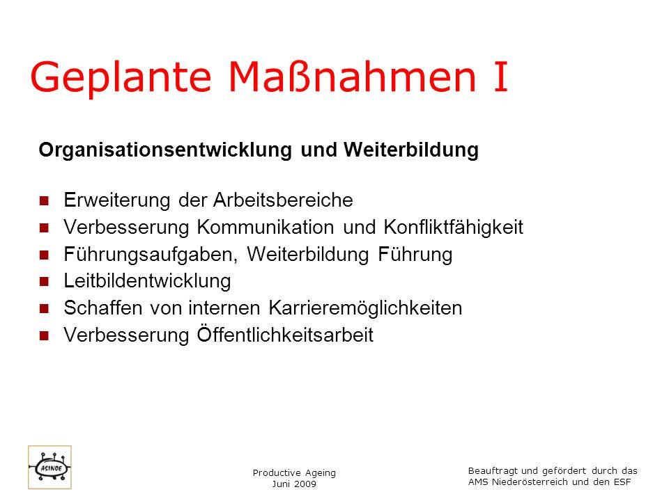 Productive Ageing Juni 2009 Geplante Maßnahmen II Betriebliche Gesundheitsförderung Informations- und Bewusstseinsarbeit für Transitarbeitskräfte Befragung Transitarbeitskräfte Einführung Gesundheitszirkel AB- Coaching Arbeitsmedizin und AUVA Teamstrukturen Wissenschaftliche Arbeit – Gesundheitsförderung in der Archäologie Beauftragt und gefördert durch das AMS Niederösterreich und den ESF