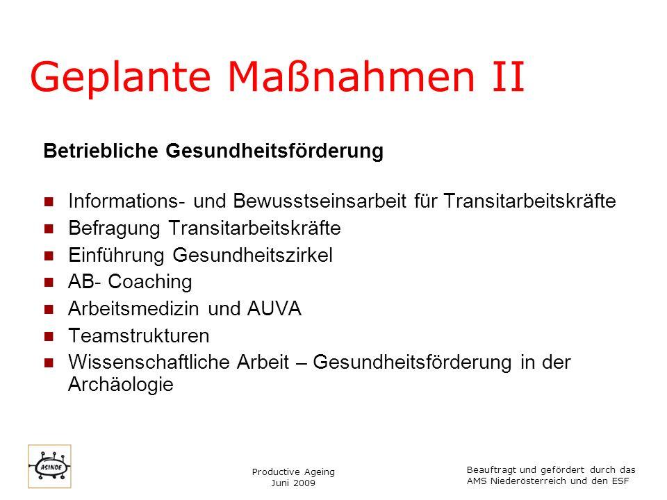 Productive Ageing Juni 2009 Zeitplan Beauftragt und gefördert durch das AMS Niederösterreich und den ESF MaßnahmeZeitrahmen 1.
