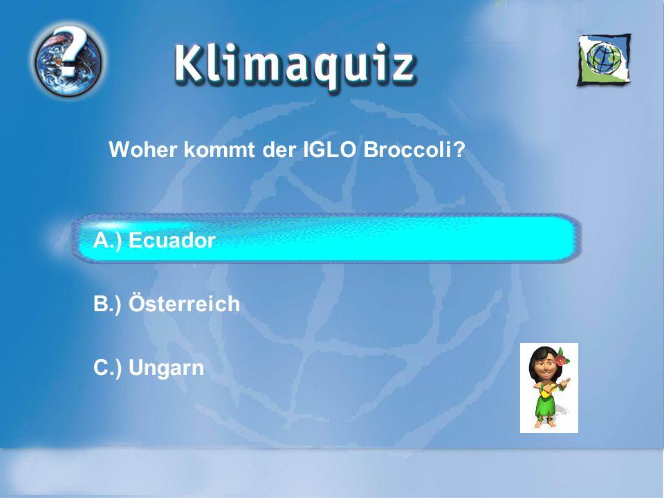 Wo wird das Geschirr für das Beach Volleyball Turnier in Klagenfurt gewaschen? A.) Graz B.) Velden C.) München
