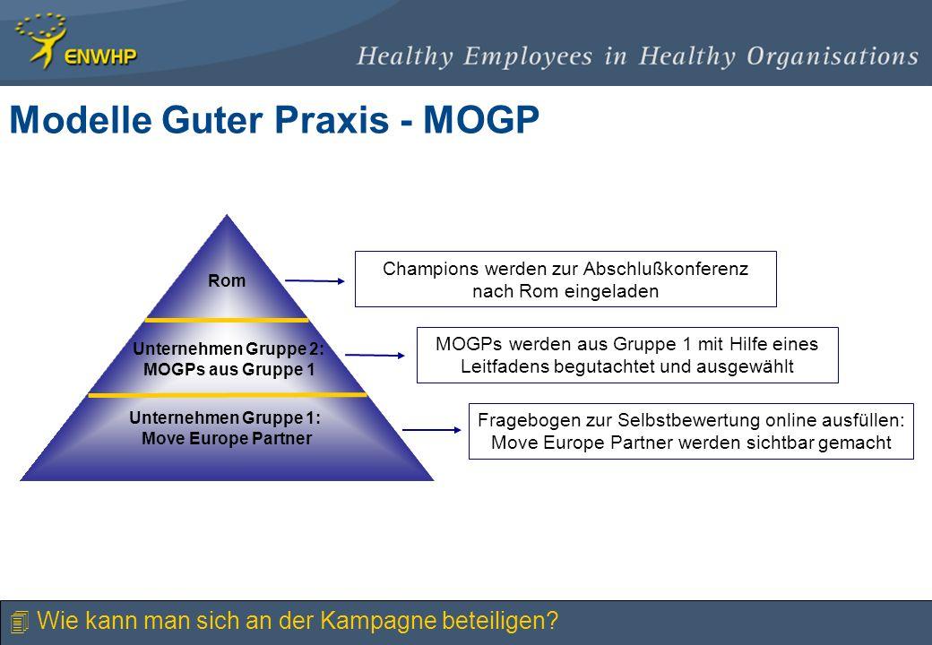 Modelle Guter Praxis - MOGP Unternehmen Gruppe 1: Move Europe Partner Unternehmen Gruppe 2: MOGPs aus Gruppe 1 Rom Fragebogen zur Selbstbewertung onli
