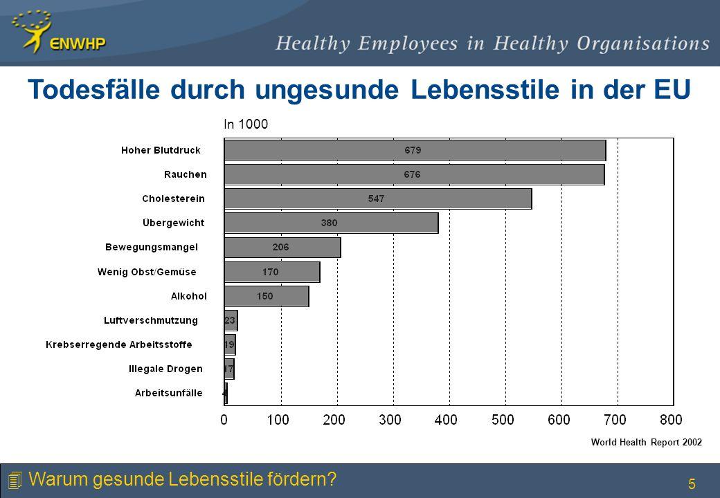 5 Todesfälle durch ungesunde Lebensstile in der EU In 1000 World Health Report 2002 4 Warum gesunde Lebensstile fördern?