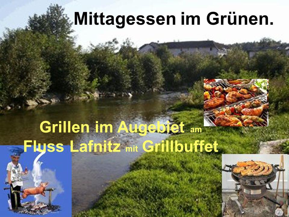 Mittagessen im Grünen. Grillen im Augebiet am Fluss Lafnitz mit Grillbuffet