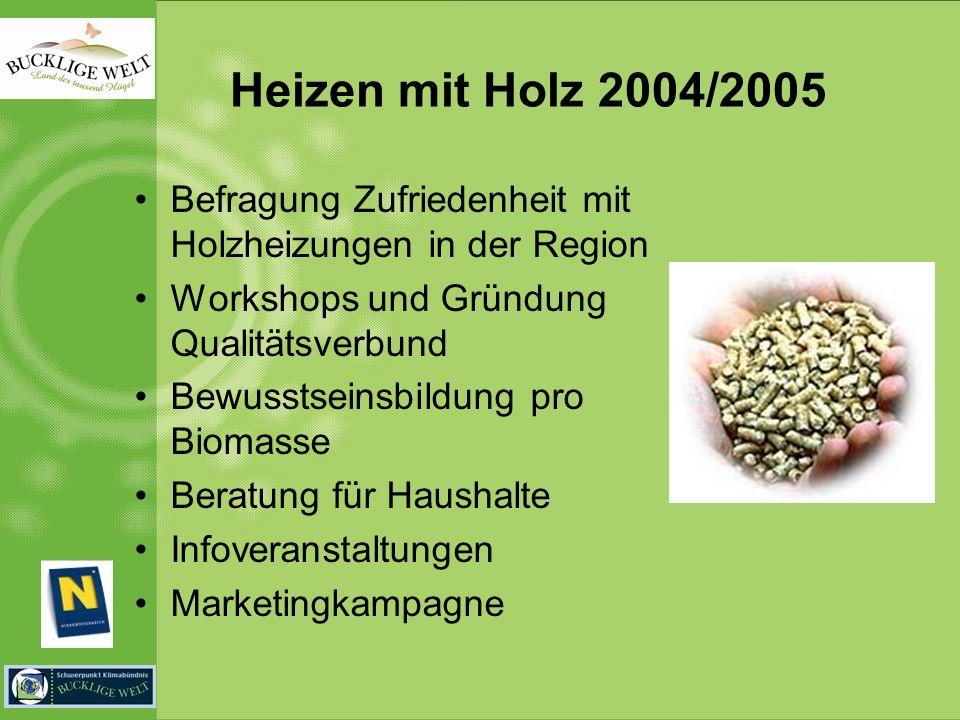 Heizen mit Holz 2004/2005 Befragung Zufriedenheit mit Holzheizungen in der Region Workshops und Gründung Qualitätsverbund Bewusstseinsbildung pro Biomasse Beratung für Haushalte Infoveranstaltungen Marketingkampagne
