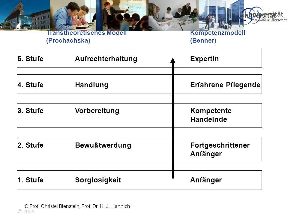 © Prof. Christel Bienstein, Prof. Dr. H.-J. Hannich 5. StufeAufrechterhaltungExpertin 4. StufeHandlungErfahrene Pflegende 3. StufeVorbereitungKompeten