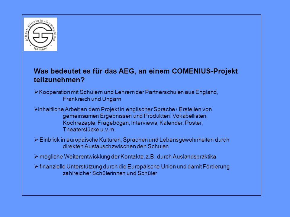 Was bedeutet es für das AEG, an einem COMENIUS-Projekt teilzunehmen.