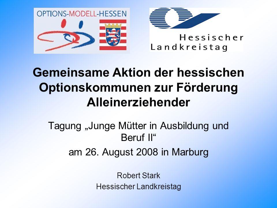 Gemeinsame Aktion der hessischen Optionskommunen zur Förderung Alleinerziehender Tagung Junge Mütter in Ausbildung und Beruf II am 26.