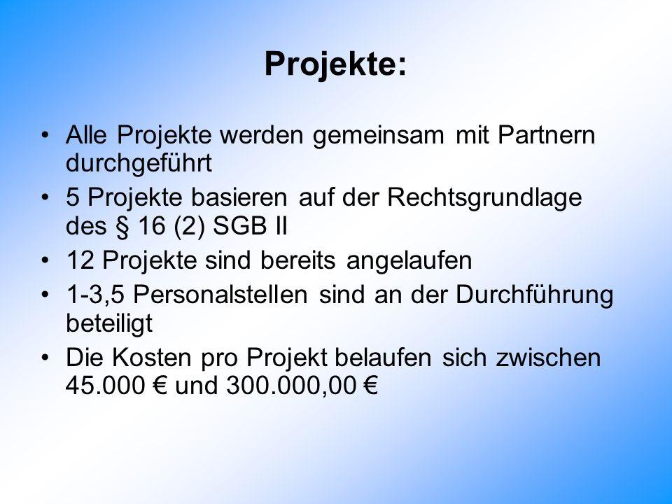 Projekte: Alle Projekte werden gemeinsam mit Partnern durchgeführt 5 Projekte basieren auf der Rechtsgrundlage des § 16 (2) SGB II 12 Projekte sind bereits angelaufen 1-3,5 Personalstellen sind an der Durchführung beteiligt Die Kosten pro Projekt belaufen sich zwischen 45.000 und 300.000,00