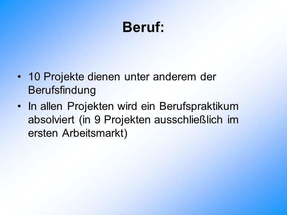 Beruf: 10 Projekte dienen unter anderem der Berufsfindung In allen Projekten wird ein Berufspraktikum absolviert (in 9 Projekten ausschließlich im ersten Arbeitsmarkt)