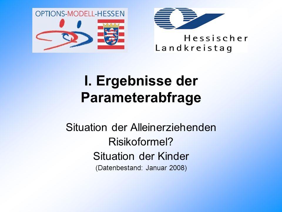 I.Ergebnisse der Parameterabfrage Situation der Alleinerziehenden Risikoformel.