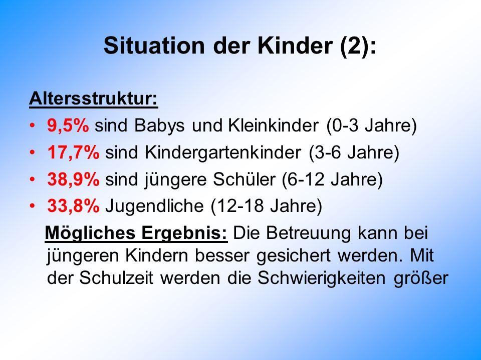 Situation der Kinder (2): Altersstruktur: 9,5% sind Babys und Kleinkinder (0-3 Jahre) 17,7% sind Kindergartenkinder (3-6 Jahre) 38,9% sind jüngere Schüler (6-12 Jahre) 33,8% Jugendliche (12-18 Jahre) Mögliches Ergebnis: Die Betreuung kann bei jüngeren Kindern besser gesichert werden.