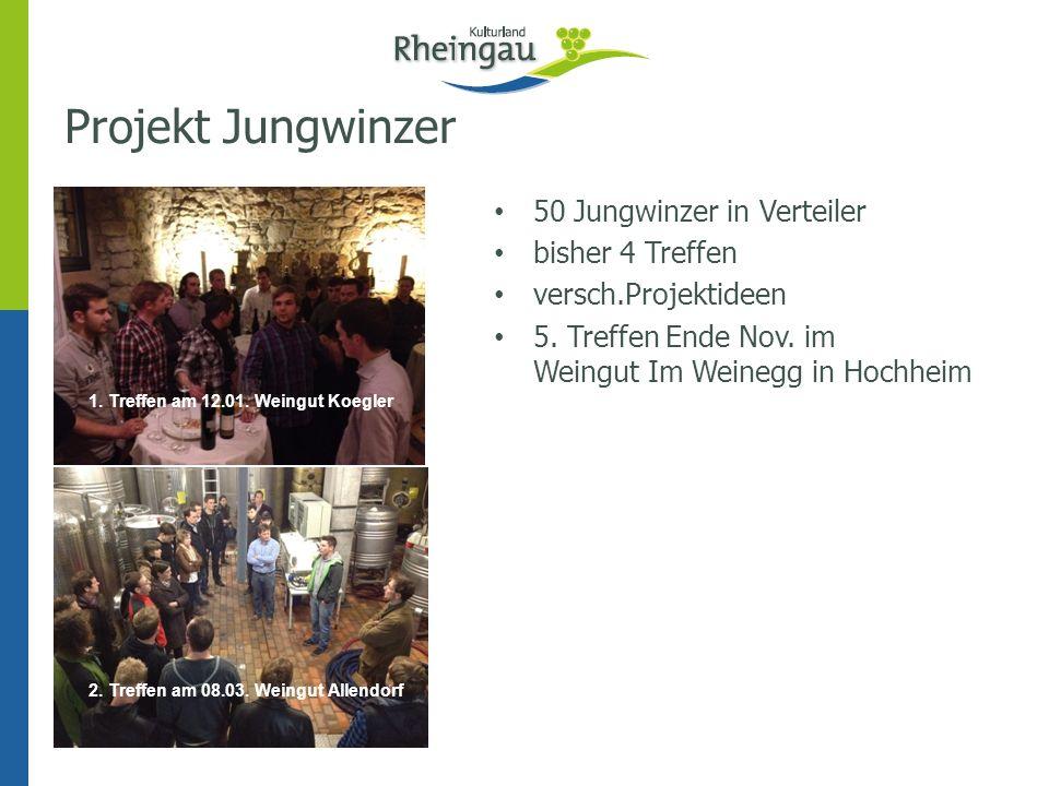 Projekt Jungwinzer 50 Jungwinzer in Verteiler bisher 4 Treffen versch.Projektideen 5. Treffen Ende Nov. im Weingut Im Weinegg in Hochheim 1. Treffen a